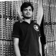 Ravi - Freelancer