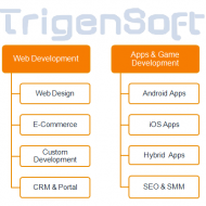 Trigensoft Solutions